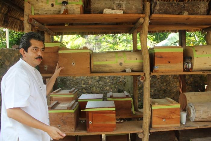 Bee-keeping at a Mayan wellness retreat