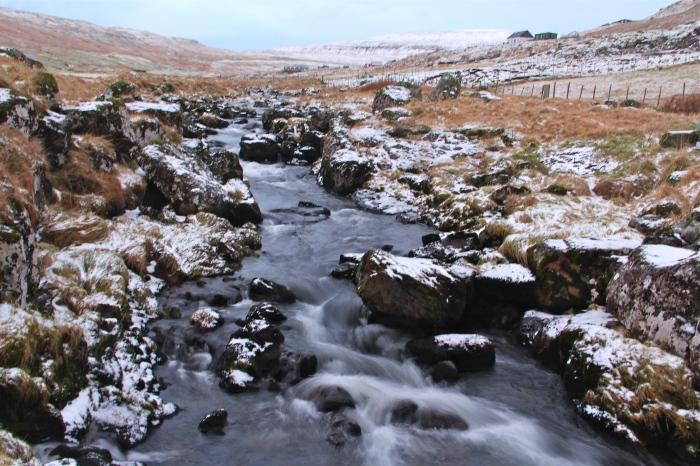 Torshavn Stream