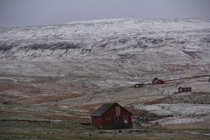 Torshavn Red Houses