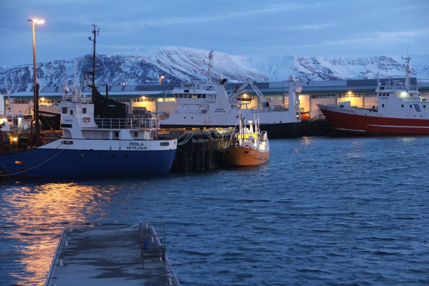 ReykjavikHarbourMorning1