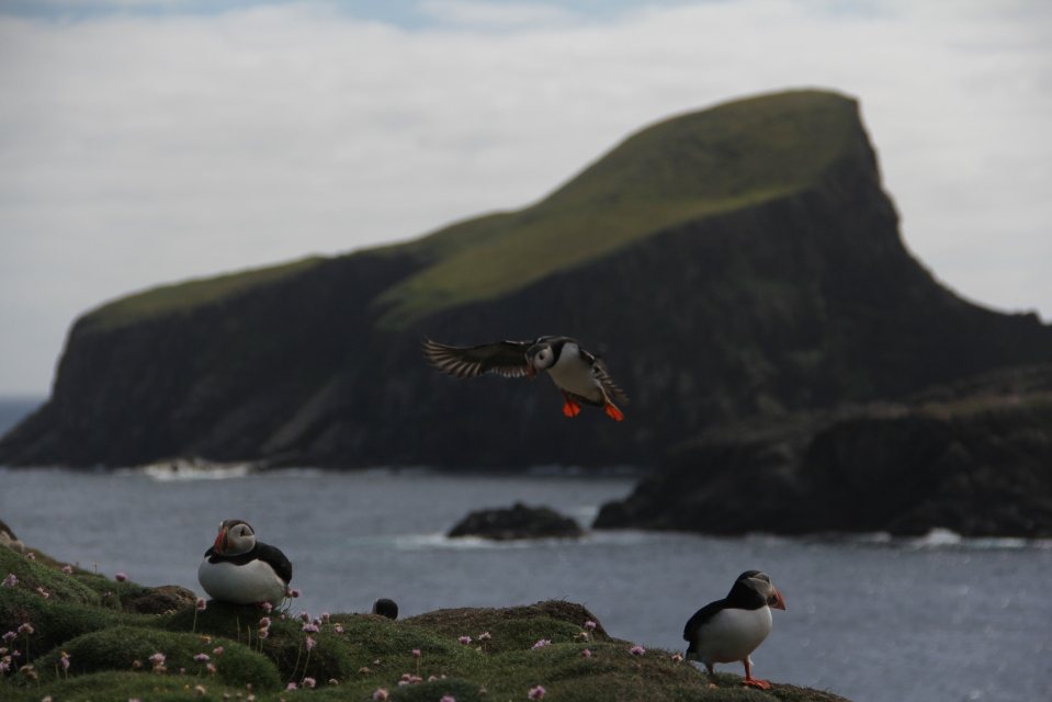 Fair Isle at BBC and Condé Nast Traveler | Karen Gardiner